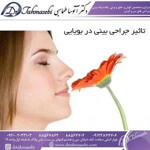 تاثیر جراحی بینی در بویایی